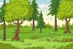 رشته جنگل