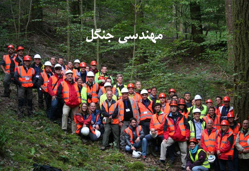 رشته مهندسی جنگل